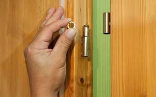 Чем смазать скрипящую дверь