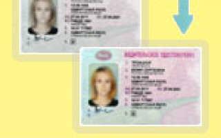 Потерял паспорт и водительское удостоверение Что делать