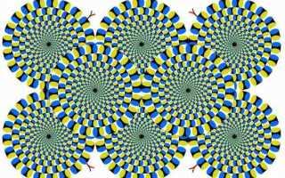Сколько кадров видит глаз человека