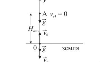Как движется тело брошенное вертикально вверх