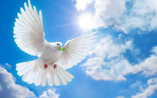 Что нельзя делать на Благовещение