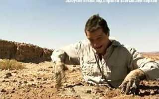 Зыбучие пески что это