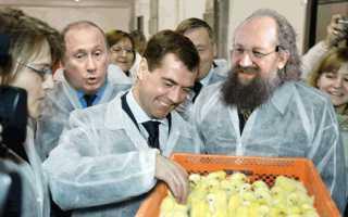 Кто по национальности Медведев Д А