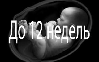 Как происходит прерывание беременности на ранних сроках