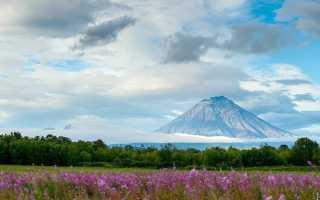 Какой вулкан расположен на Камчатке